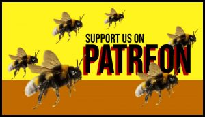 Be a good buddy and support us on Patreon